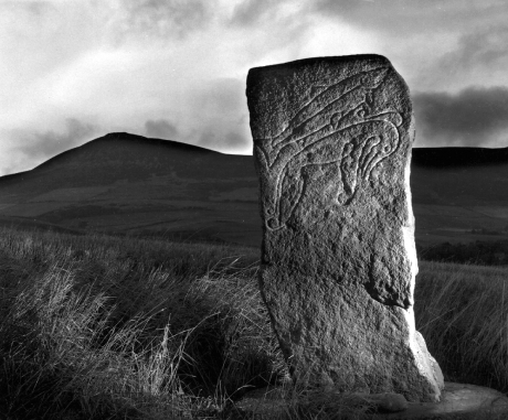 Craw Stane, Rhynie | Pictish sculpted stone | The Picts | Wee Guide | Duncan Jones| Goblinshead | 9781899874125 | © Tom Gray